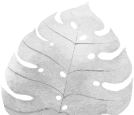 hoja_r2.png